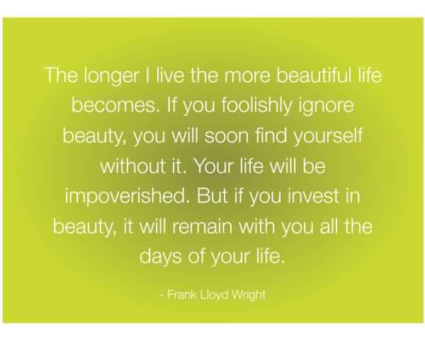 Best Life Quotes  by Frank Lloyad wright
