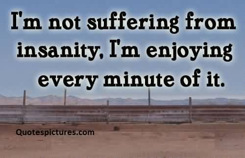 Best short funny pinterest quotes for facebook - I am not suffereing from insanity.i am enjoying every minute of it