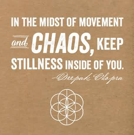 Good Chaos Quote by Stephen H. Wolinsky~The purpose of the nervous system is to organize chaos.