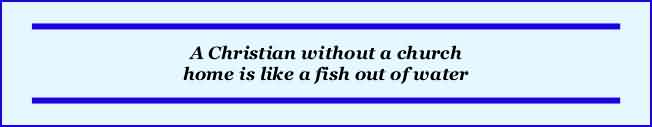 Church Quote ~ A christian without a Church home is like a fish out of water.