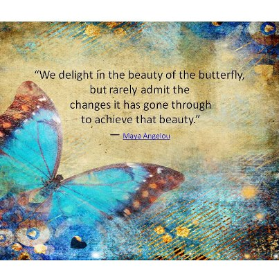 Clarity Quotes by Maya Angelou~ We Delight in the beauty of teh butterfly, but rarely Admit the Changes it has gone through to Achieve That Beauty .