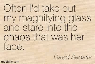 Fabulous Chaos Quote By David Sedaris ~ Often I'd Take Out My Magnifying Glass And Stare Into The Chaos That Was Her Face.