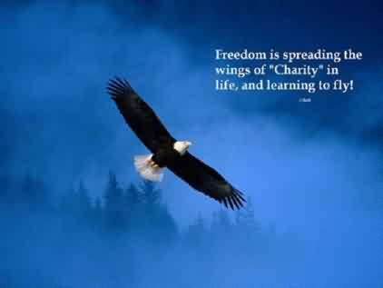 Fabulous Charity Quote ~ Freedom is spreading the wings of Charity in life , and learning to fly