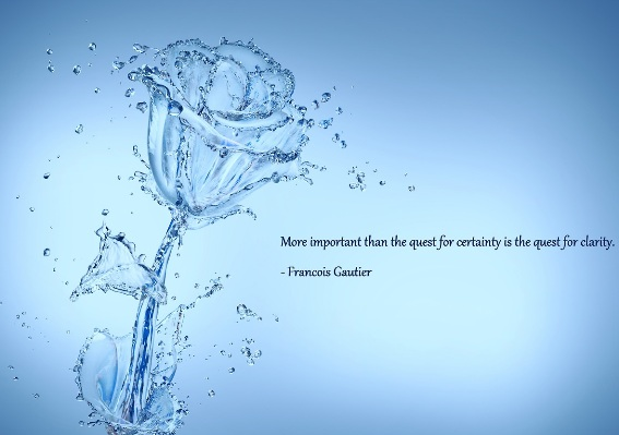 Fabulous Clarity Quotes By Francouis gautier ~More Imporatant than the quest for certainty is the quest for clarity.