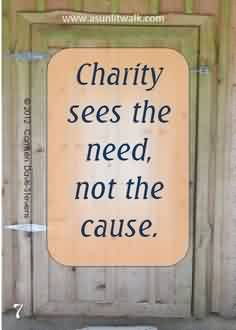 Famous Charity Quote~ Charity sees the need , not the cause.