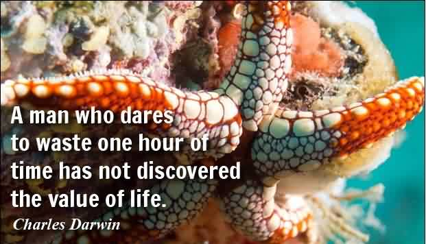 Famous Life Quotes by Charles Darwin - A man who dares to waste one hour of time has not discovered the value of life