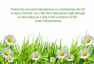 Famous Life Quotes Image - Evolution of life by LOUIS SCHWARTZBERG