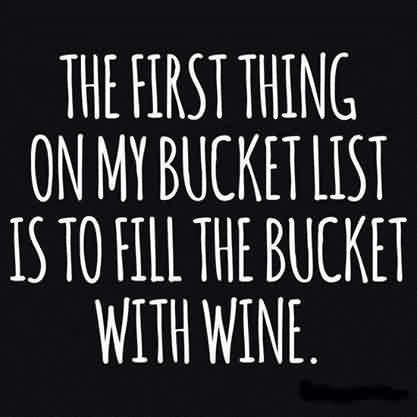 Funny Wine Quotes for him - the first thing on my bucket list is to fill the bucket with wine