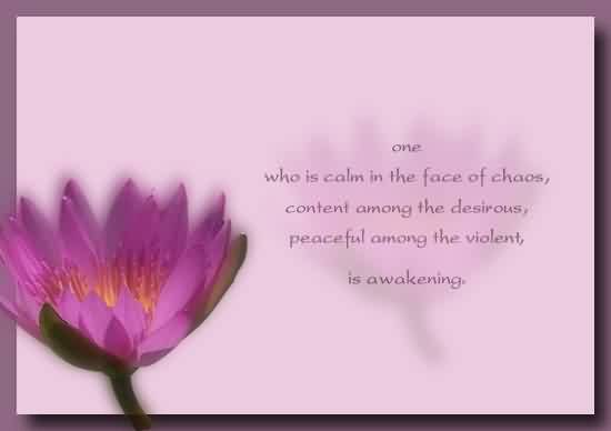Good Chaos Quote ~One Who Is Calm In The Face Of Chaos Content Among The Desirous Peaceful Among The Violent Is Awakening.