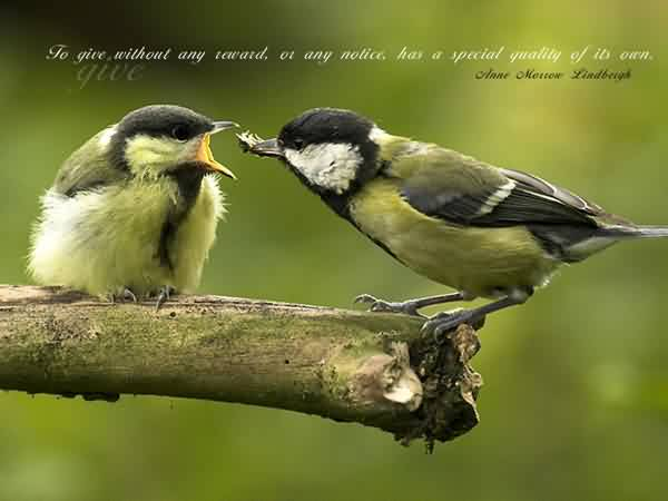 Good Charity Quote ~ To give Without any notice  has a special quality of own