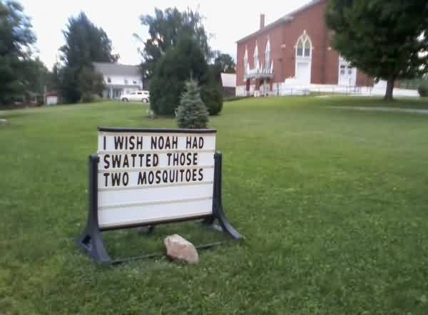 Good  Church Quote~ I wish noah had swatted those two mosquitoes.