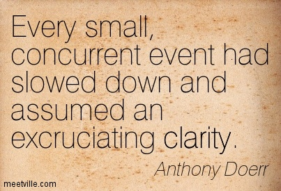 Good Clarity Quote By  Anthony Doerr~Concurrent Event Had Slowed Down And Assumed An Excruciating Clarity.