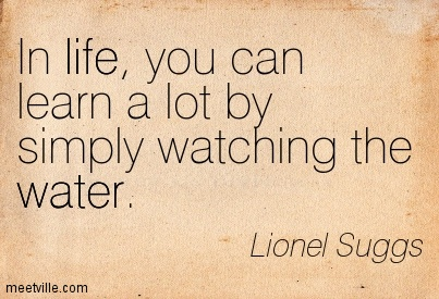 Life clarity Quote By Lionel Suggs~In life, you can learn a lot by simply watching the water.
