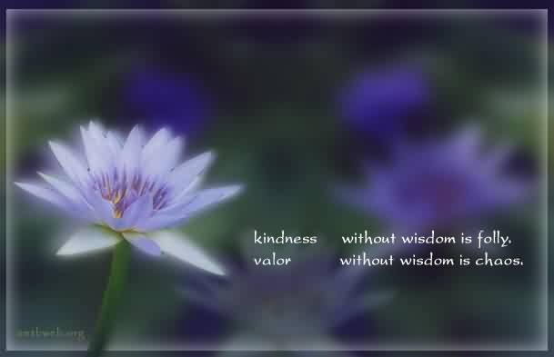 Nice Chaos Quote ~Kindness Without Wisdom Is Folly. Valor With Wisdom Is Chaos.