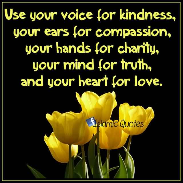 Nice Charity Quote By Islamic ~ Use your voice for kindness, your ears for compassion..Nice Charity Quote By Islamic ~ Use your voice for kindness, your ears for compassion..
