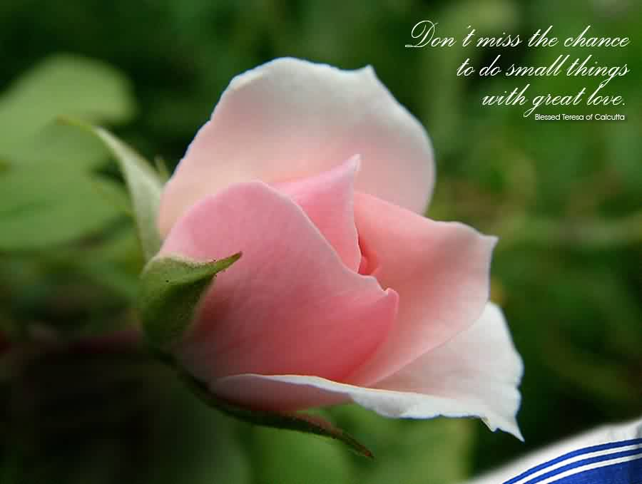 Nice Church Quote ~ Don't Miss the chance to do small things with great love.