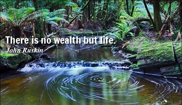 Nice Life Quotes -There is no wealth but life by John Ruskin