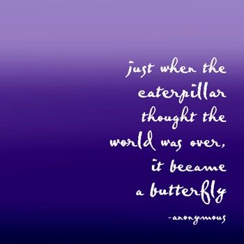 a-butterfly-quote.jpg