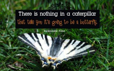 be-a-butterfly-quote.jpg