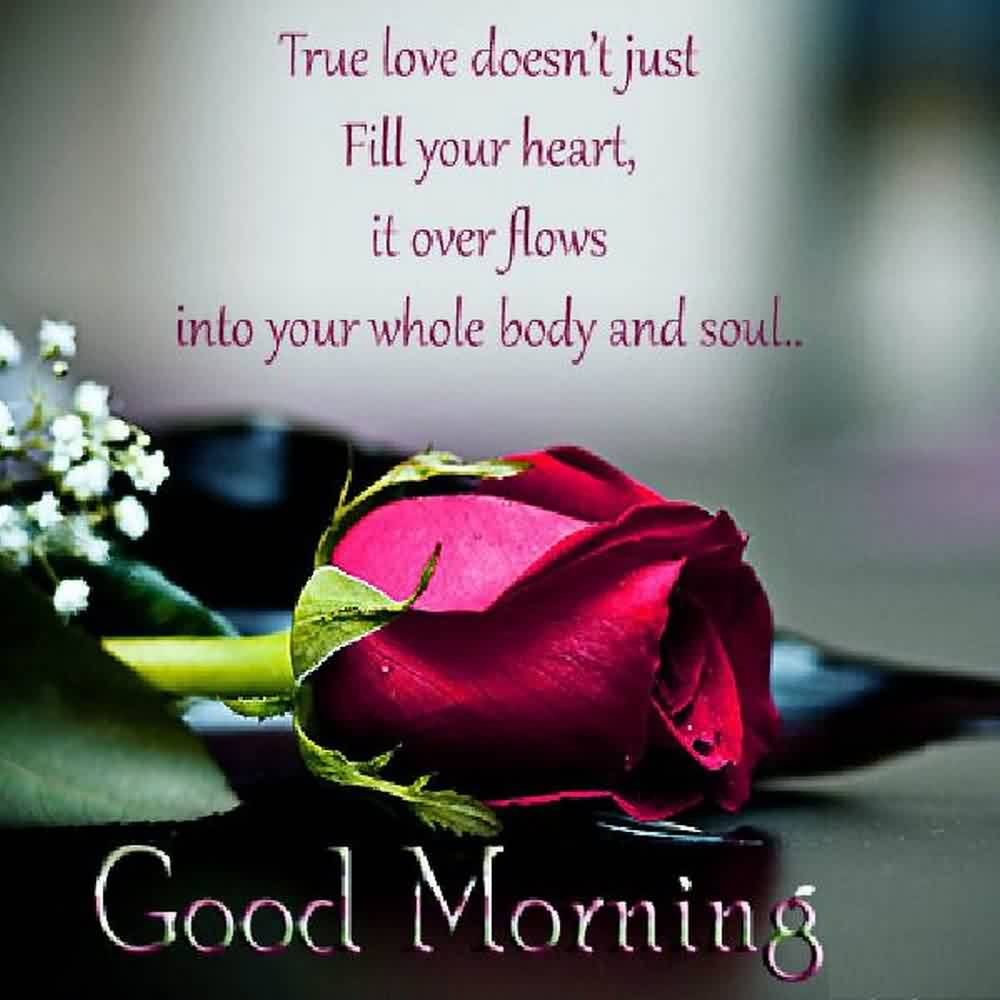 Bast Love Pictures With Good Morning: Good Morning Wife Quotes. QuotesGram