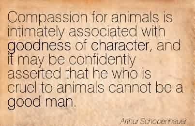 compassion-for-animals-quote.jpg