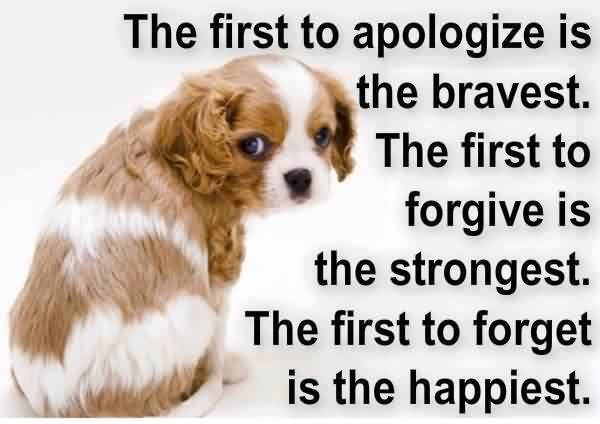 first-apologize-quote-is-bravest.jpg