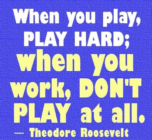 Motivational Quote About Work Hard By Theodore Roosevelt When You