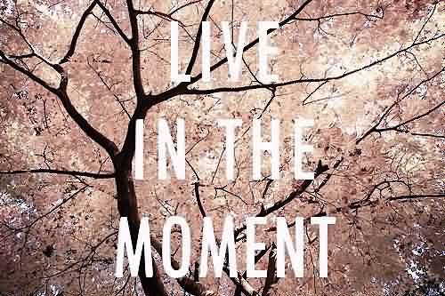 how to live in the moment quotes