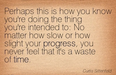 popular-work-quote-curtis-sittenfeld-perhaps-this-is-how-you-know-youre-doing-the-thing-youre-intended-to-no-matter-how-slow-or-how-slight-your-progress-you-never-feel-that-its-a-waste-of-time.jpg