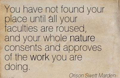 best-work-quote-by-orison-swett-marden-you-have-not-found-your-place-until-all-your-faculties-are-roused-and-your-whole-nature-consents-and-approves-of-the-work-you-are-doing.jpg