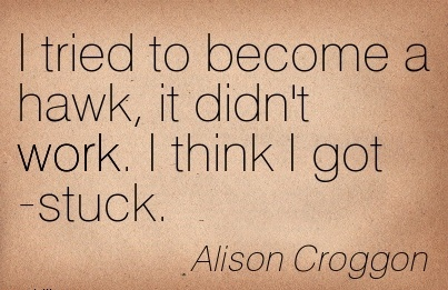 famous-work-quote-by-alison-croggon-i-tried-to-become-a-hawk-it-didnt-work-i-think-i-got-stuck.jpg