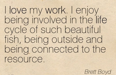 great-work-quote-by-brett-boyd-i-love-my-work-i-enjoy-being-involved-in-the-life-cycle-of-such-beautiful-fish-being-outside-and-being-connected-to-the-resource.jpg