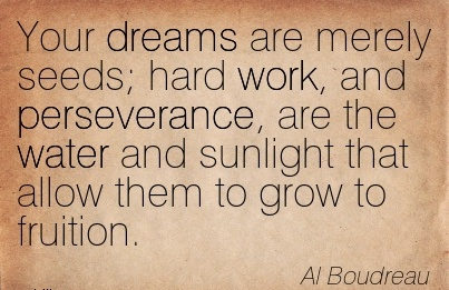 motivational-work-quote-by-al-boudreau-your-dreams-are-merely-seeds-hard-work-and-perseverance-are-the-water-and-sunlight-that-allow-them-to-grow-to-fruition.jpg