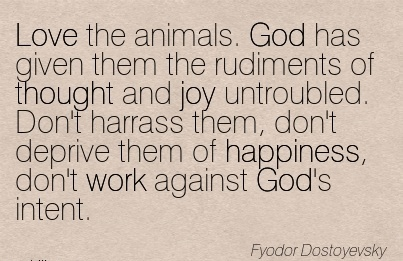 nice-work-quote-by-fyodor-dostoyevsky-love-the-animals-god-has-given-them-the-rudiments-of-thought-and-joy-untroubled-dont-harrass-them-dont-deprive-them-of-happiness-dont-work-against-gods-inte.jpg