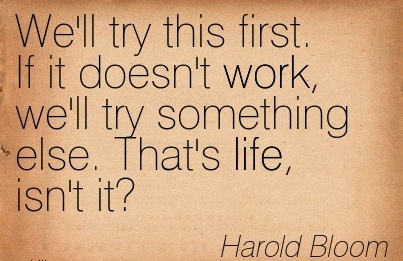 nice-work-quote-by-harold-bloom-well-try-this-first-if-it-doesnt-work-well-try-something-else-thats-life-isnt-it.jpg