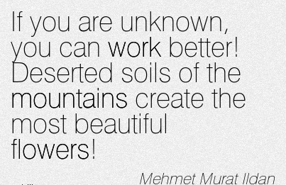 nice-work-quote-by-mehmet-murat-ildan-if-you-are-unknown-you-can-work-better-deserted-soils-of-the-mountains-create-the-most-beautiful-flowers.jpg