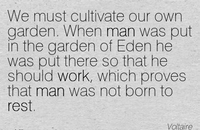 popular-work-quote-by-voltaire-we-must-cultivate-our-own-garden-when-man-was-put-in-the-garden-of-eden-he-was-put-there-so-that-he-should-work-which-proves-that-man-was-not-born-to-rest.jpg