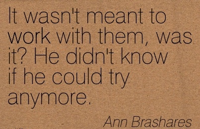 work-quote-by-ann-brashares-it-wasnt-meant-to-work-with-them.jpg