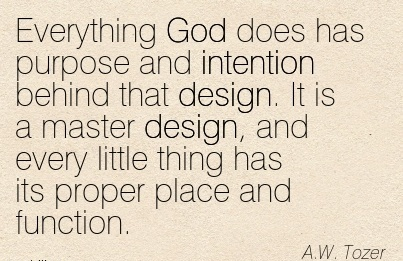 work-quote-by-aw-tozer-everything-god-does-has-purpose-and-intention-behind-that-design-it-is-a-master-design-and-every-llittle-thing-has-its-proper-place-and-function.jpg