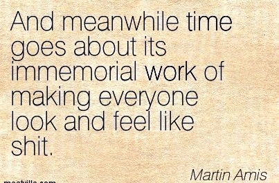 work-quote-by-martin-arnis-and-meanwhile-time-goes-about-its-immemorial-work-of-making-everyone-look-and-feel-like-shit.jpg