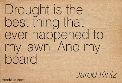 Drought is the best thing that ever happened to my lawn. And my beard.  - Jarod Kintz