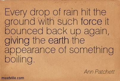 Every drop of rain hit the ground with such force it bounced back up again, giving the earth the appearance of something boiling.  - Ann Patchett