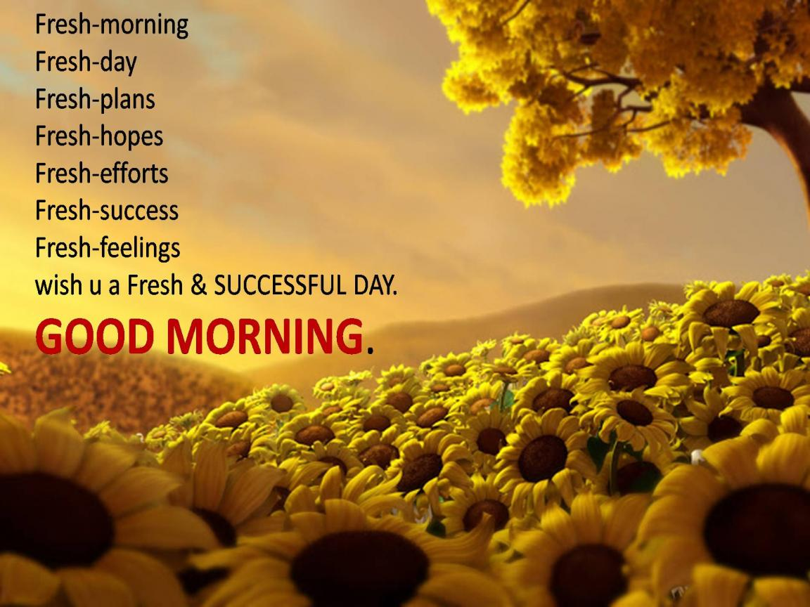 A New Sun A Fresh Day A Cool Greetings Asking U To Forget All Ur