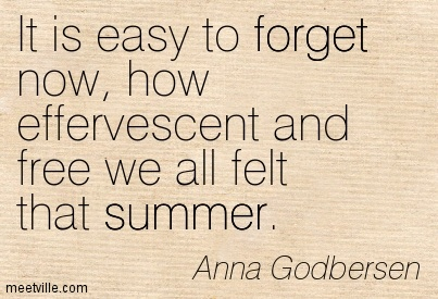 It is easy to forget now, how effervescent and free we all felt that summer.  - Anna Godbersen