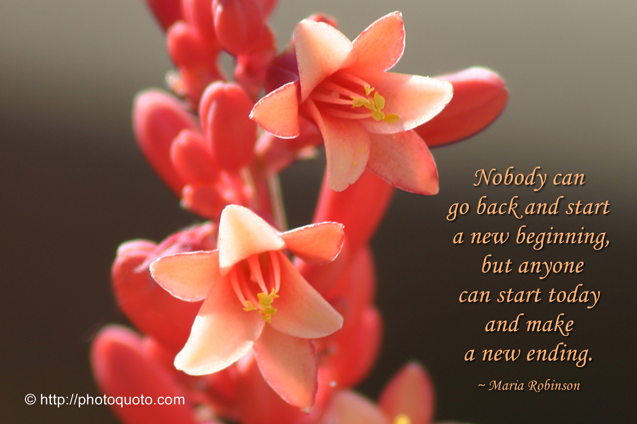 """  Nobody Can Go Back And Start A New Beginning, But Anyone Can Start Today And Make A New Ending "" - Maria Robinson"