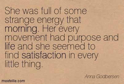 She was full of some strange enegy that morning. Her every movement had purpose and life and she seemed to  find satisfaction in every little thing.  - Anna Godbersen