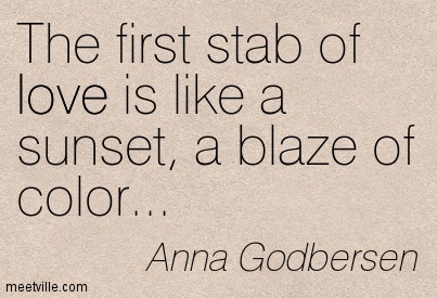 The first stab of love is like a sunset, a blaze of color…  - Anna Godbersen