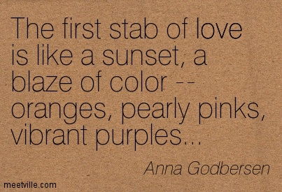 The first stab of love is like a sunset, a blaze of color — oranges, pearly pinks, vibrant purples…  - Anna Godbersen