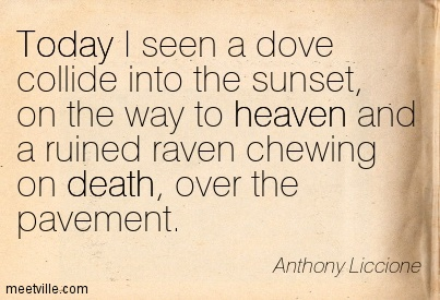 Today I seen a dove collide into the sunset, on the way to heaven and a ruined raven chewing on death, over the pavement.
