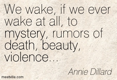 We wake, if we ever wake at all, to mystery, rumors of death, beauty, violence…